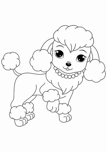 Coloring Pages Puppies Printable Dogs Poodle Dog