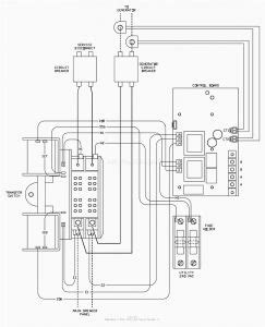 generac  amp transfer switch wiring diagram sample