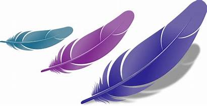 Feather Clipart Bird Clip Library