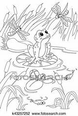 Pond Coloring Clipart Fotosearch Frog Clip sketch template