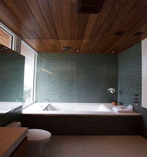 eco friendly ceiling designs   modern home