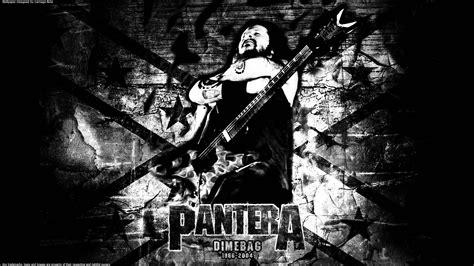 Pantera Animal Wallpaper - pantera wallpaper hd