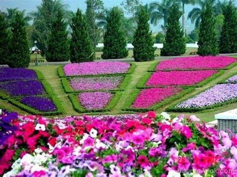 13 best flower gardens and landscaping images on