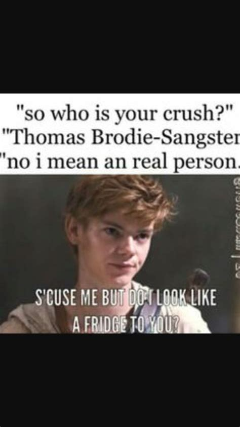 The Maze Runner Memes - 25 best ideas about the maze runner on pinterest maze runner maze runner series and maze