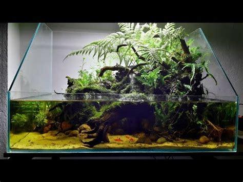 aquariumterrariumpaludariumripariumvivarium  ban