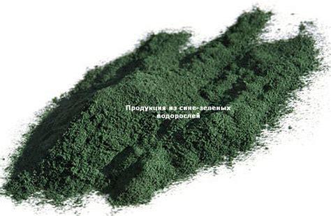 Удобрения и биотопливо из синезеленых водорослей