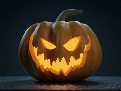 Pumpkin Halloween Jack Lantern Vegetable Jackolantern Models