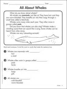 math word problems for 1st grade reading comprehension test grade 1 boxfirepress