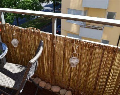die besten 25 bambus sichtschutz ideen auf