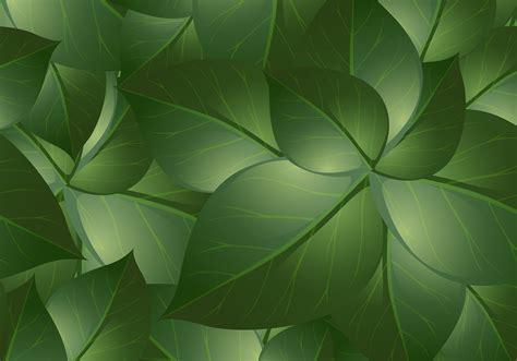green leaf backgrounds  photoshop brushes  brusheezy