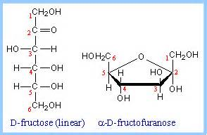 organic chemistry - Carbon numbering in carbohydrates ...