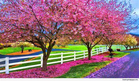 Free download Desktop Wallpaper Spring Season Beautiful ...