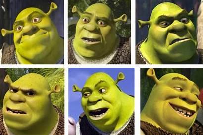 Face Shrek Faces Come Chris Writers Storytelling