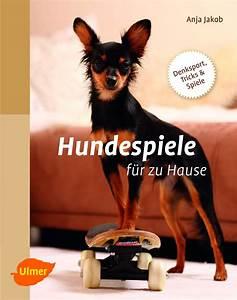 Klimageräte Für Zu Hause : gewinnspiel hundespiele f r zu hause ~ Yasmunasinghe.com Haus und Dekorationen