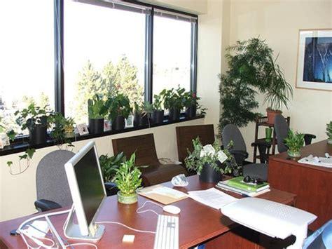 feng shui plants for office desk best indoor plants for office in india plants for office