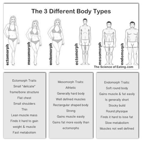 understand  body  plan  diet training