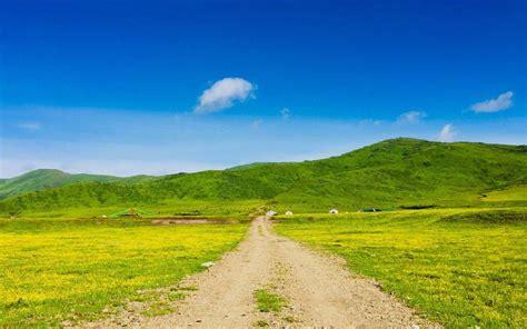 唯美护眼绿色草原风景,高清图片,电脑桌面-壁纸族