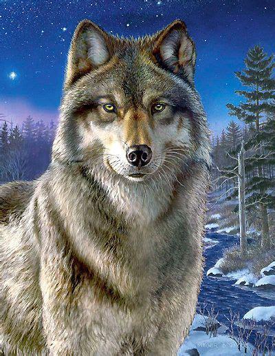 puzzle wolf  der nacht  teile winter tiere wald