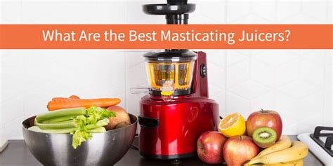 Best Masticating Juicer by The Top 10 Best Masticating Juicers Of 2017 Vegbyte