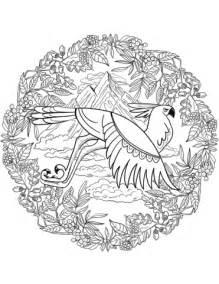 eagle mandala coloring page  printable coloring pages