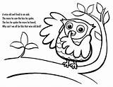 Owl Coloring Poet Pages sketch template