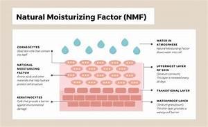 Understanding Your Skin U2019s Natural Moisturizing Factor
