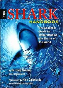The Shark Handbook  The Essential Guide For Understanding