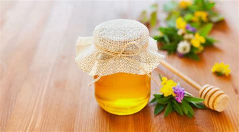 miel propolis gelee royale decouvrez tous les