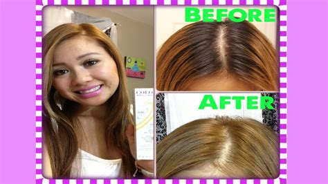 How To Dye Black Hair To Light Brown