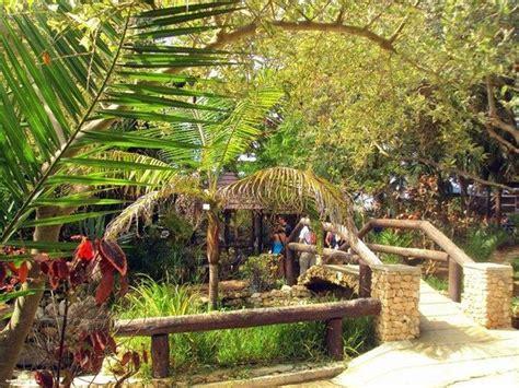 Quinta das Palmeiras (L'île de Porto Santo) : 2021 Ce qu ...