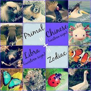 Primal Astrology Signs Zodiac Amino