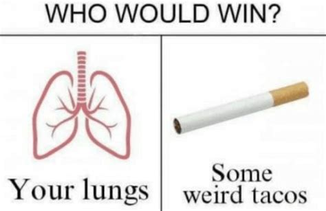 The Best Of The 'who Would Win?' Meme Thechive