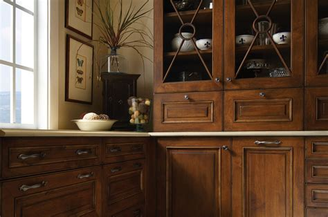 Unique and Exotic Ideas for Kitchen Cabinet Door Inserts