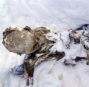 Everest 2015 Cda : in 5260 metern h he mumifizierte leichen vermisster bergsteiger entdeckt welt ~ Orissabook.com Haus und Dekorationen