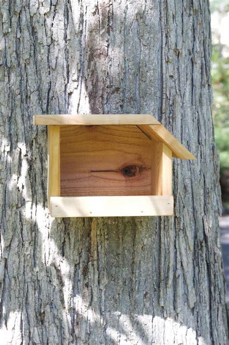 mourning dove cedar bird house etsy vogelvoliere voegel zen