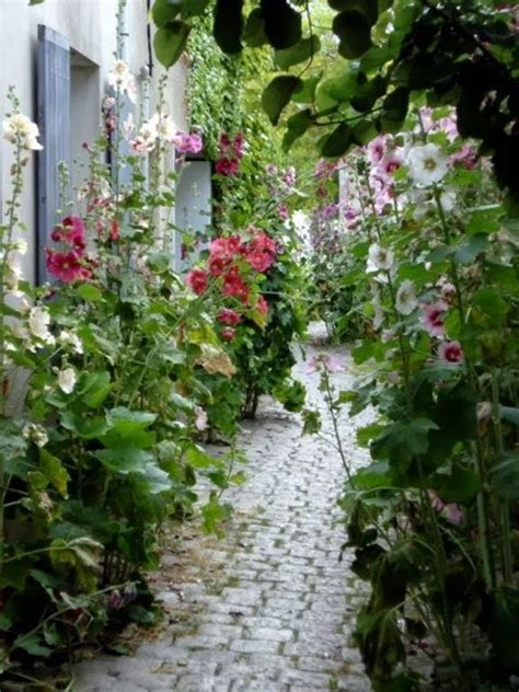 My Enchanting Cottage Garden The Best Perennial Plants