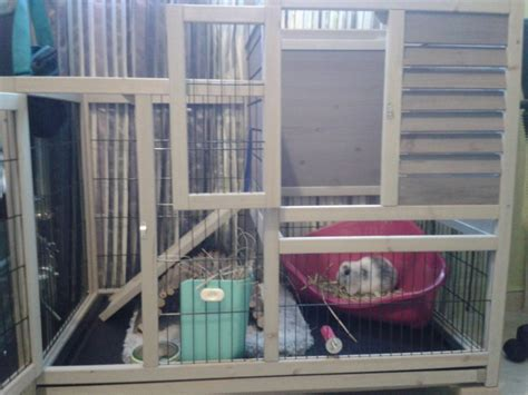 cage a lapin interieur cage lapin interieur