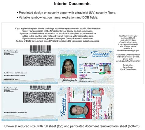 Tennessee Drivers License Template by Best Photos Of Tennessee Id Template Id Drivers