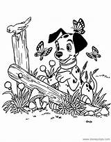 Coloring Pages 101 Colouring Disney Dalmatians Printable Sheets Dalmatian Puppies Disneyclips Dalmations Puppy Sheet Spring Printables Books Lucky Pdf Pinocchio sketch template