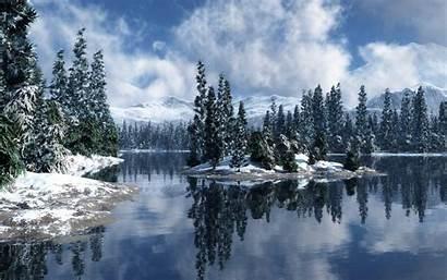 Forest Snow Snowy Desktop Christmas Screensavers Wallpapers