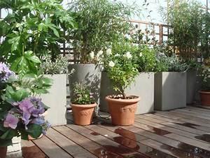 Aménagement Terrasse Appartement : am nagement paysager d 39 une terrasse paris l 39 aurey des jardins ~ Melissatoandfro.com Idées de Décoration