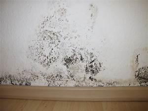 Humidité Mur Extérieur : combattre l 39 humidit des murs bricobistro ~ Premium-room.com Idées de Décoration