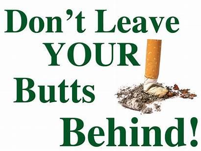 Cigarette Butt Butts Littering Ground Disposal Litter