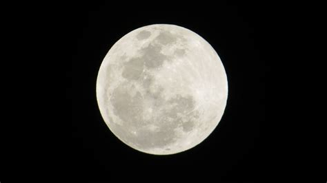 florida awed rare super blood moon lunar eclipse