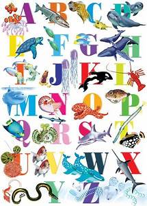 more ocean alphabet ocean friends and inspiration With ocean alphabet letters