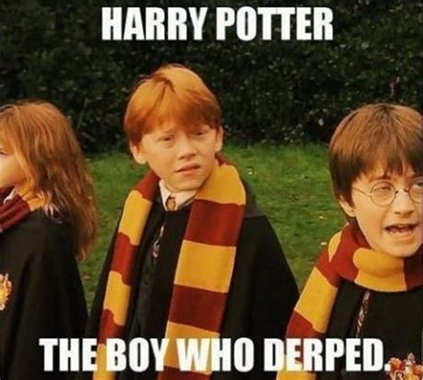 Harrypotter Memes - insulting harry potter memes mean insulting pictures gifs teen com