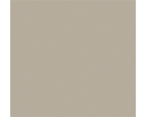 Was Ist Taupe Für Eine Farbe by Klebefolie Uni Matt Taupe 67 5x200 Cm Bei Hornbach Kaufen