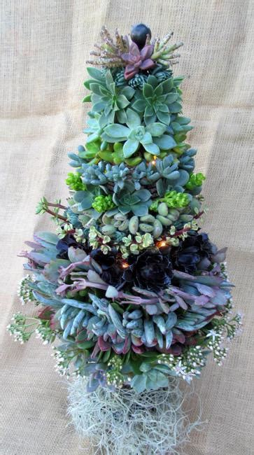 mini christmas tree live 25 modern ideas to design live trees with succulents