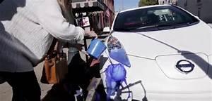 Litiere Qui Se Nettoie Toute Seule : la blague de nissan pour sa voiture qui se nettoie toute seule diazmag ~ Melissatoandfro.com Idées de Décoration