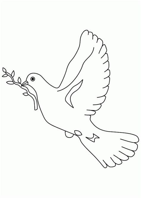 dove coloring page coloring home
